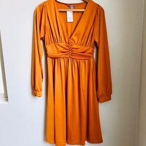 💕Gorgeous H&M Long Sleeve Bronze Dress 👑